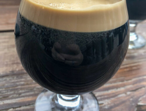 Seasonal Suds: Fall Beer in Charlotte